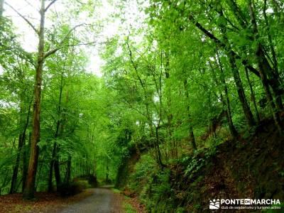 Valle del Baztán - Elizondo - Zugarramurdi; excursiones turismo; lugares para hacer senderismo; rut